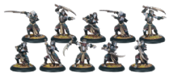 Legion Everblight Nyss Hex Hunters (10)